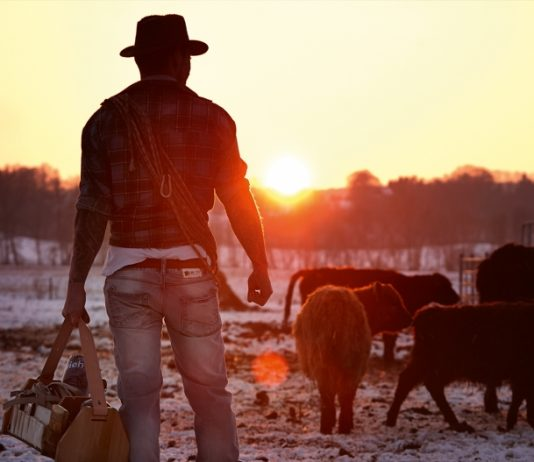 Heldbergs Cowboy